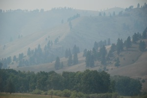 The air was thick with smoke for most of our drive.